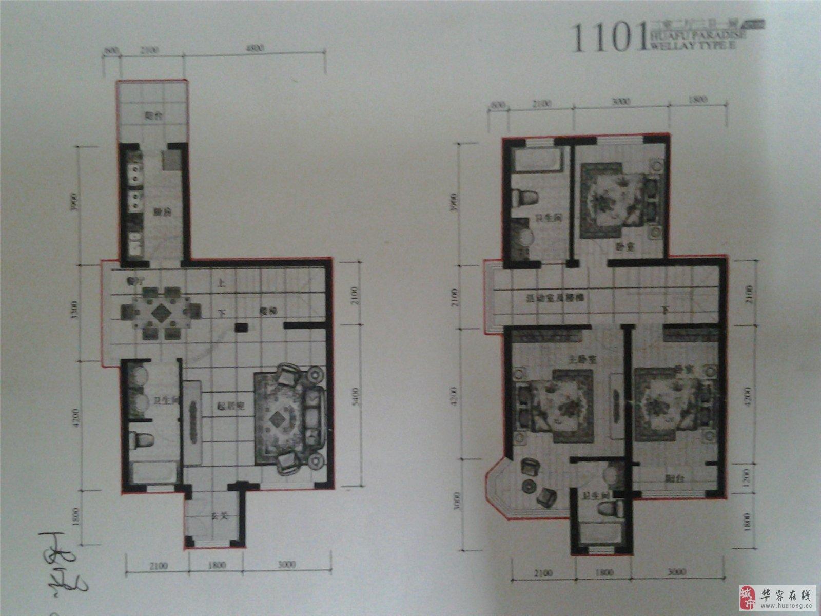 三层复式楼平面设计图展示图片