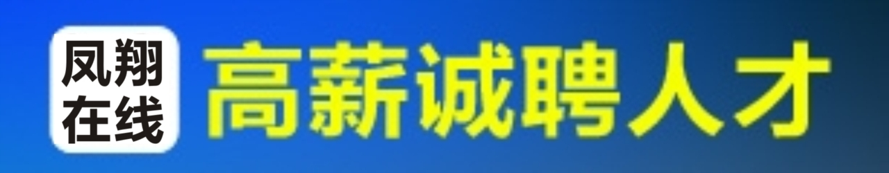 凤翔在线网络传媒有限公司