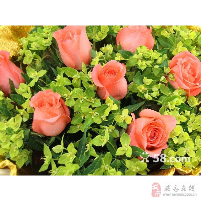 内江最大鲜花店最快的鲜花速递开业花篮生日蛋糕水果篮