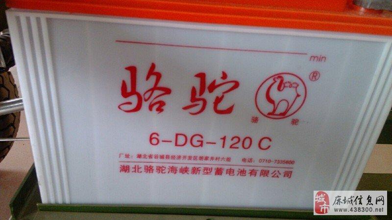 现有电动三轮车骆驼水电瓶便宜出售