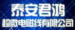泰安君鸿超微电磁线有限公司