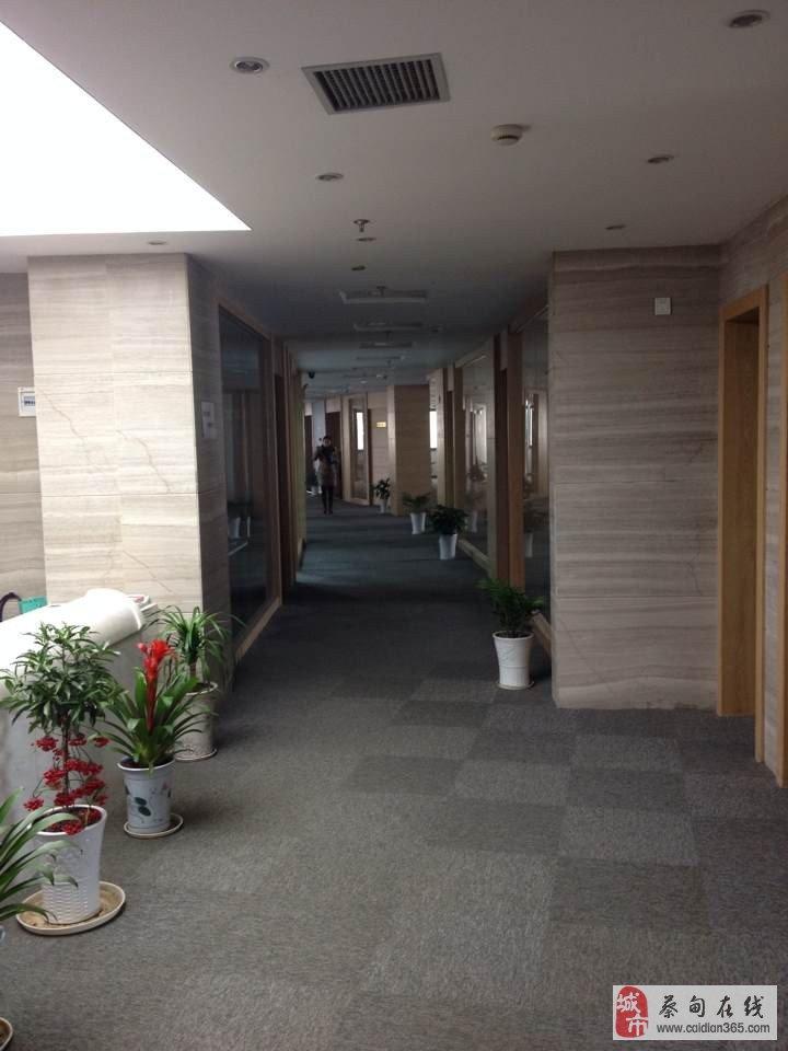 蔡甸入口10分钟,距离汉口火车站30分钟
