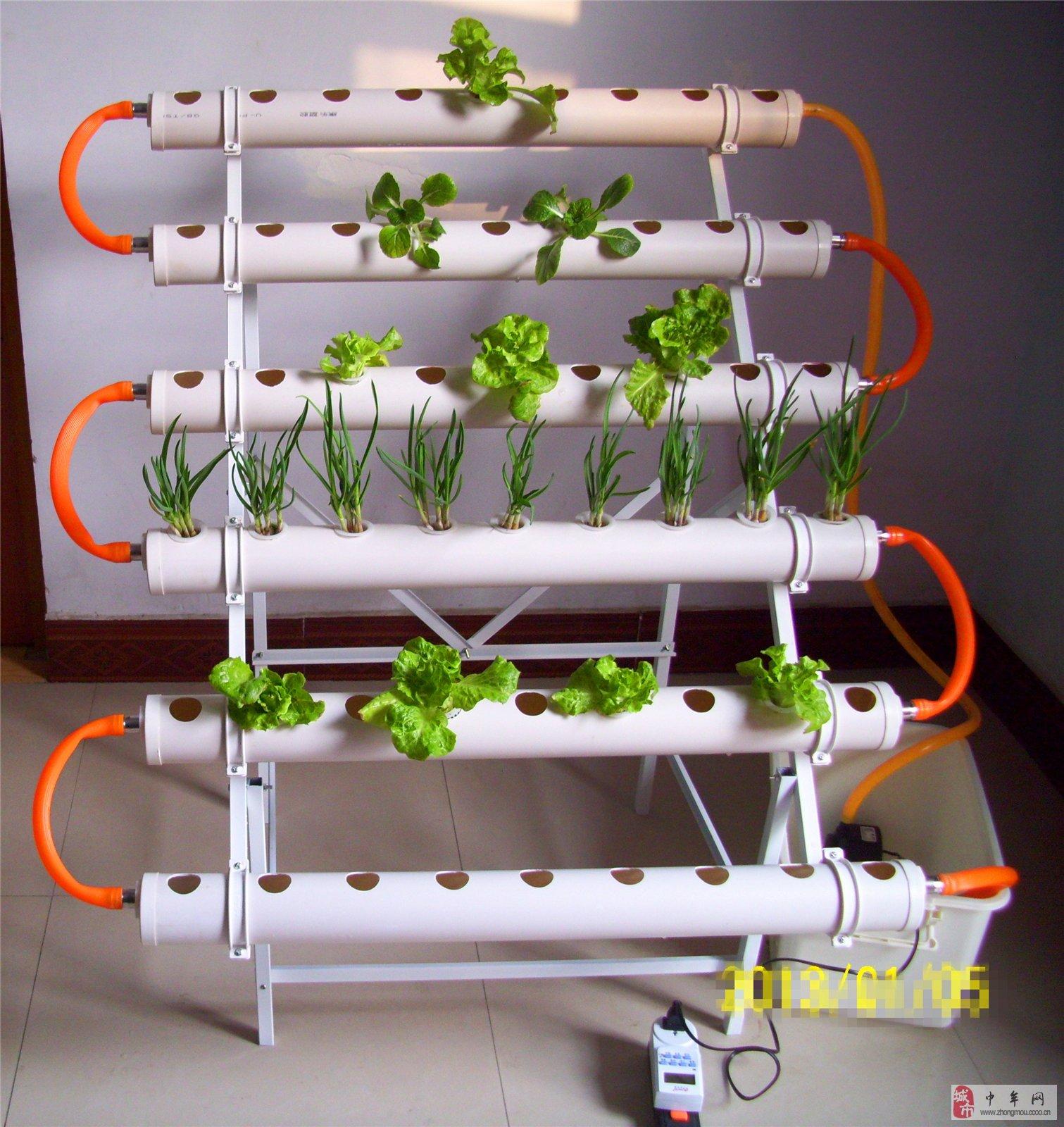 阳台农业是新兴的时尚潮流,美化室内环境,增加含氧量,调节空气湿度,是家居环境理想的调节剂。足不出户,体验动手快乐的同时,还能品尝新鲜绿色的无公害蔬菜,不断收获新的惊喜! 家用无土栽培设备还是进行科普教育的良好素材,观察记录植物生长发育全过程,调动孩子的好奇心,提高探索实践的欲望。 本套无土栽培设备采用加大型号种植管,不仅可以种植普通的绿叶蔬菜,而且可以种植草莓,辣椒,芹菜等矮茎瓜果类蔬菜,还可以栽培各种水生花卉。只要有充足的阳光,合适的温度,发挥你的想象力,在收获劳动成果的同时,还能欣赏美好的景色。 购买