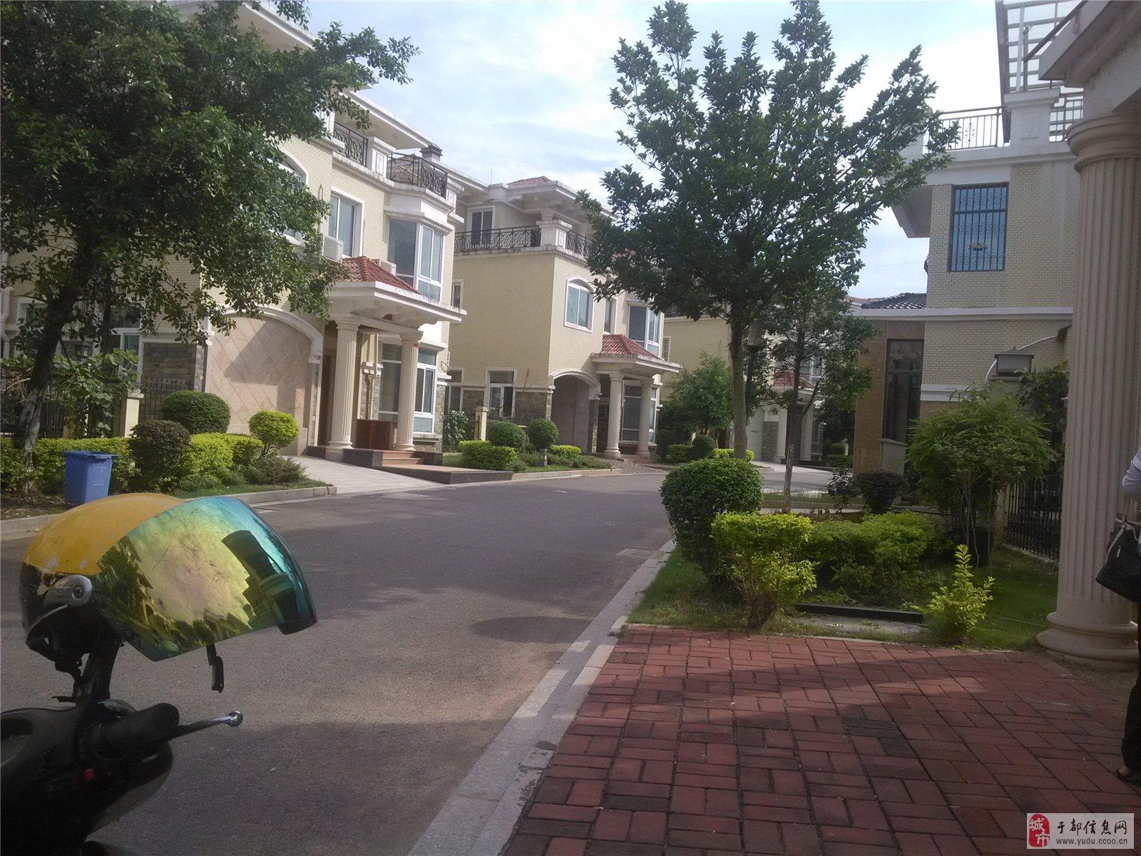 金海湾花园送露台63万出售 --112万元「旺铺出售」红旗大道旺达