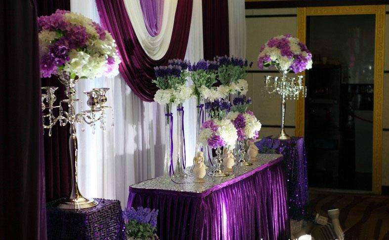 �典案例紫色