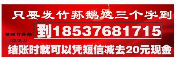"""发短息""""竹荪鹅""""到18537681715免费领取"""