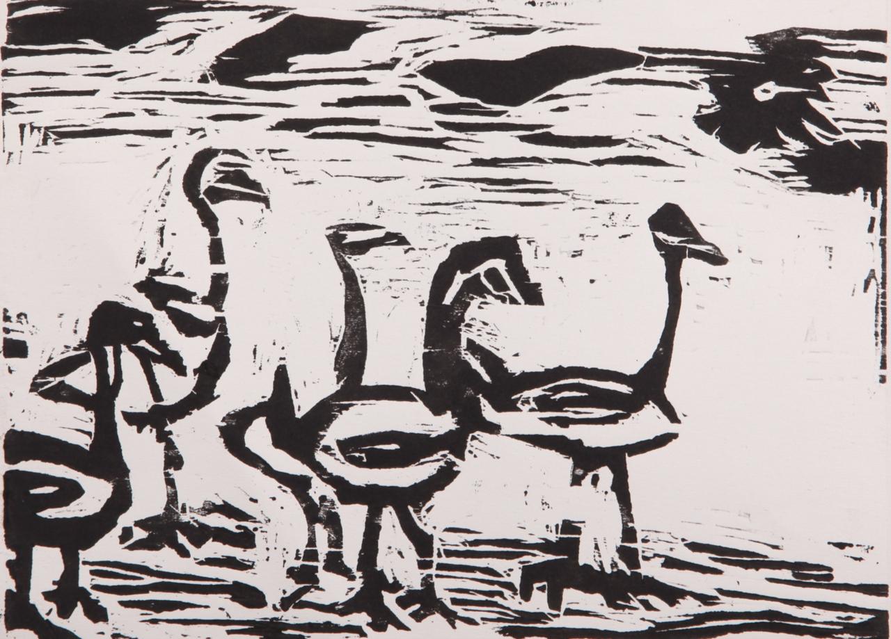 2015春博罗平安标本作品初中教育中学大赛黑板报生物a标本图片