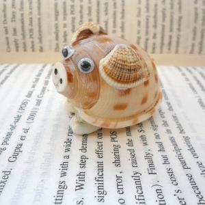 海螺贝壳工艺品 可爱小猪