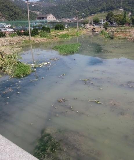 安阳街道西岙河疏浚工程开工