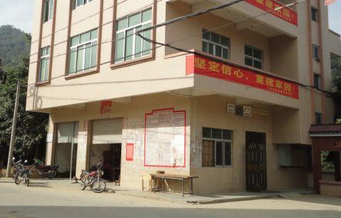高州大坡镇桃李村